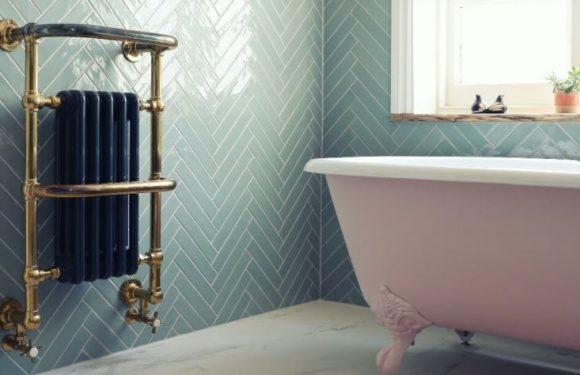 Съвети за избор на лира за баня за отопление